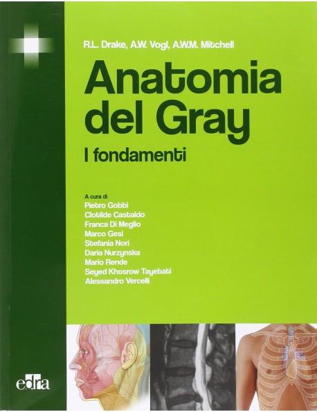 ANATOMIA DEL GRAY - DRAKE VOGL MITCHELL