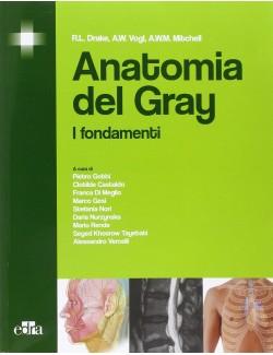 ANATOMIA DEL GRAY - DRAKE VOGL MITCHELL (-50%)